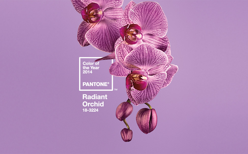 color del año 2014-pantone